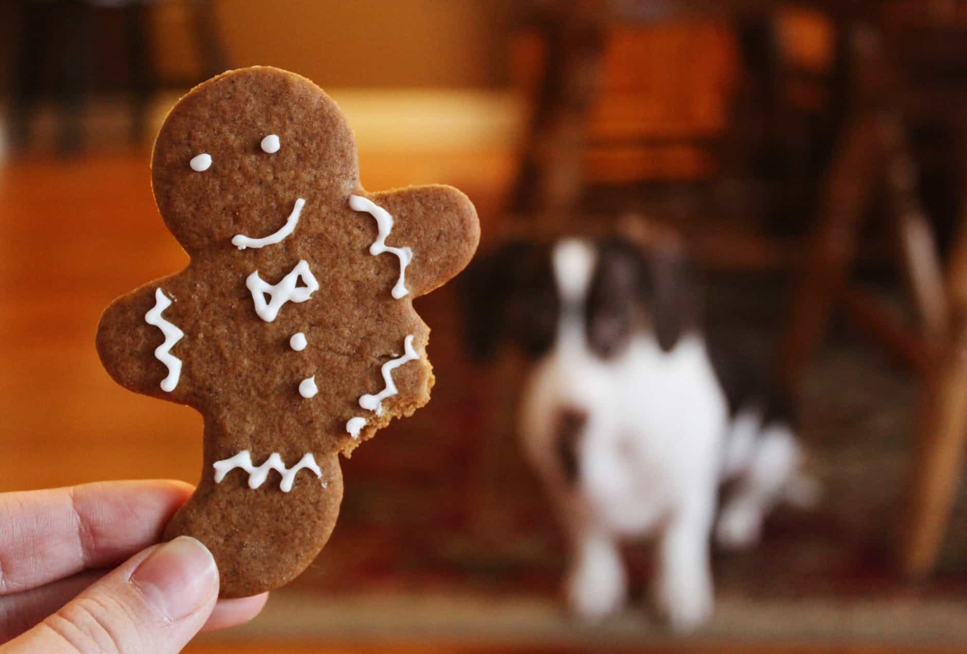 Why Is Gingerbread Man Always Present During Christmas?